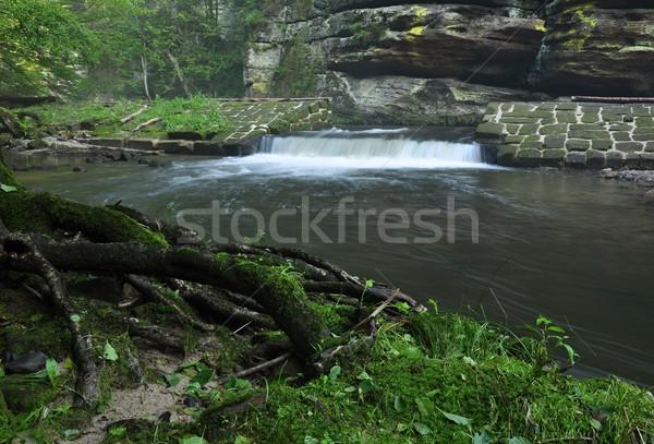 Kamenice river flowing beautiful wooded valley Stock photo © ondrej83