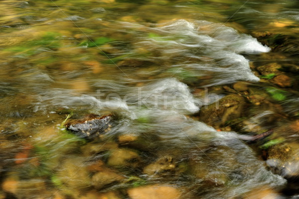 Onde fiume piccolo Svizzera texture Foto d'archivio © ondrej83