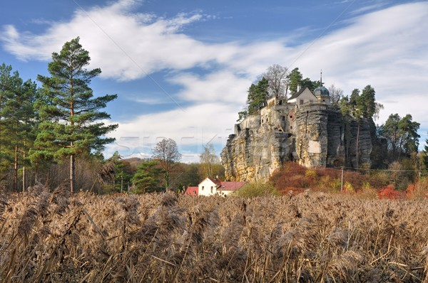 Stock photo: Castle rock