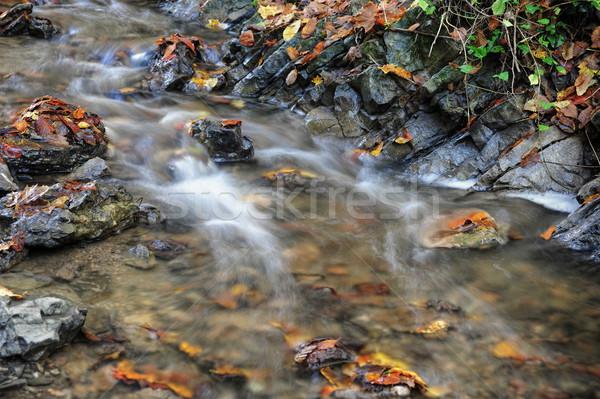 Outono enseada pequeno pedra água Foto stock © ondrej83
