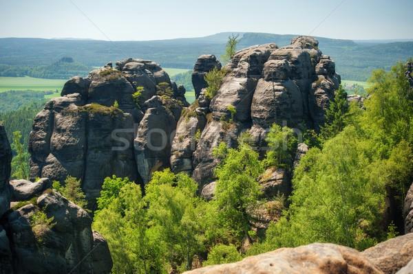Zandsteen rotsen blauwe hemel tsjechisch Zwitserland hout Stockfoto © ondrej83