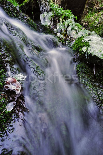 Tavasz patak jég kicsi vízesés zöld Stock fotó © ondrej83