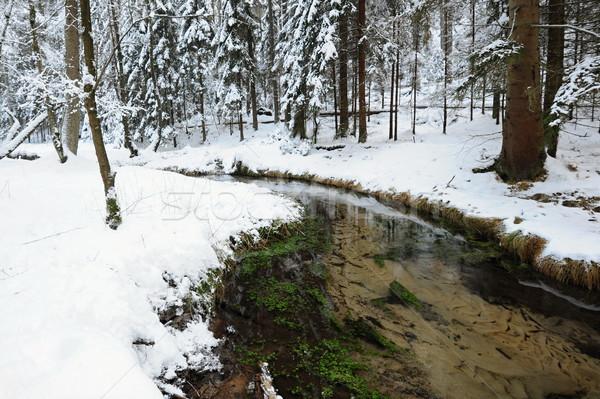 Inverno torrente Svizzera neve Foto d'archivio © ondrej83