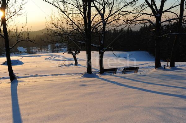 зима Панорама два чешский снега мороз Сток-фото © ondrej83