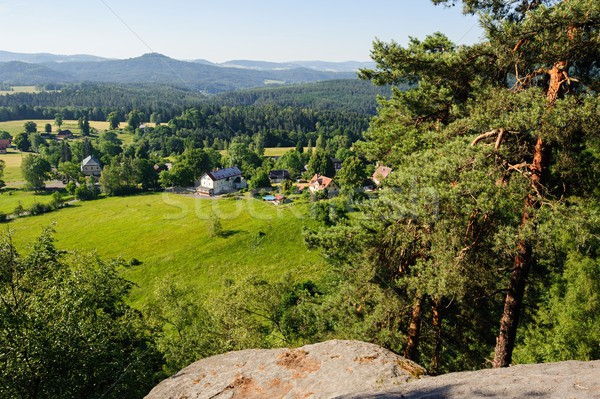 Summer landscape with forests, meadows rocks and sky Stock photo © ondrej83