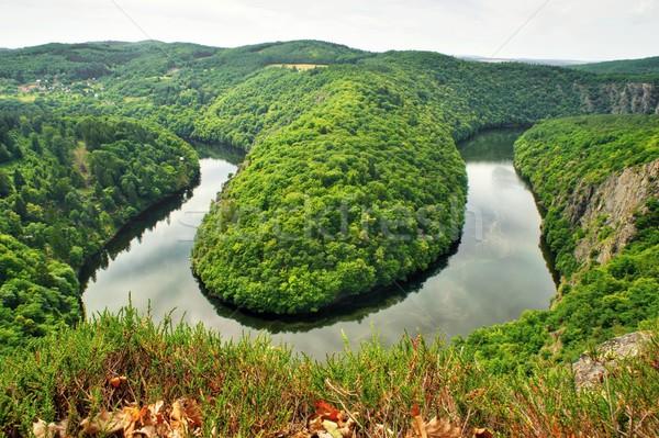 перспектива реке Чешская республика воды дерево пейзаж Сток-фото © ondrej83