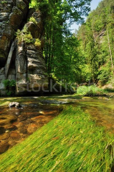 реке пород чешский Швейцария Сток-фото © ondrej83