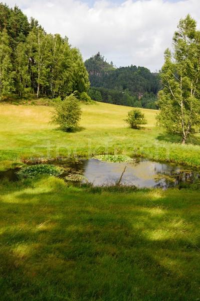 лет пейзаж пруд пород небе Сток-фото © ondrej83