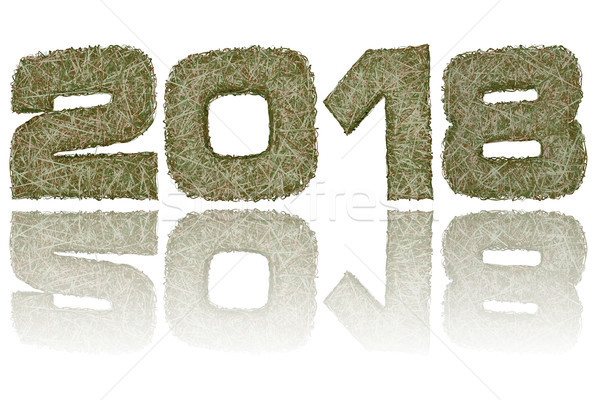 2018 digits composed of military camouflage stripes on glossy white background Stock photo © oneo