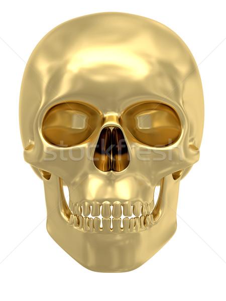 Golden skull isolated on white Stock photo © oneo