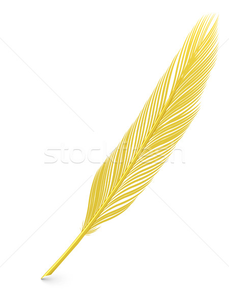 Golden feather quill  Stock photo © oneo