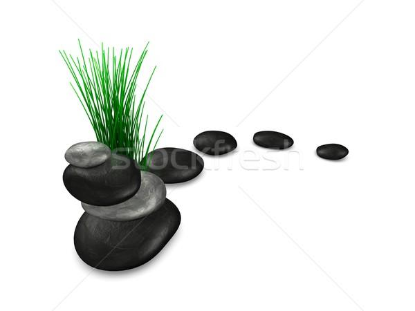 Zen stones and plant Stock photo © OneO2