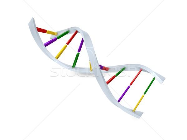 DNA Stock photo © OneO2