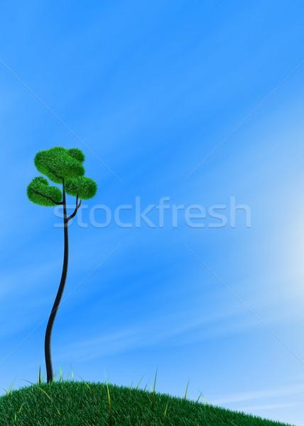 Green grass tree - Day Stock photo © OneO2