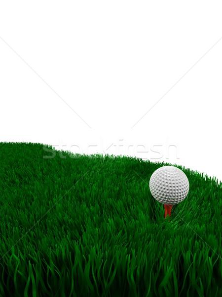 Golflabda közelkép zöld fű copy space fű sport Stock fotó © OneO2