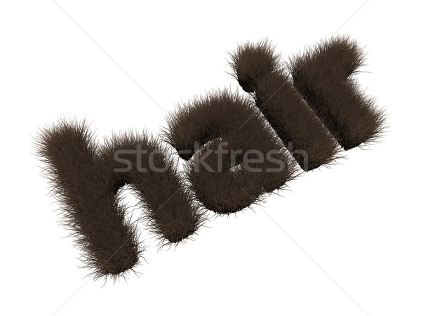 Stock photo: hair