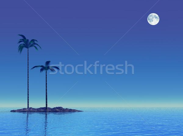 Schemering tropische zee klein twee palmbomen Stockfoto © Onyshchenko