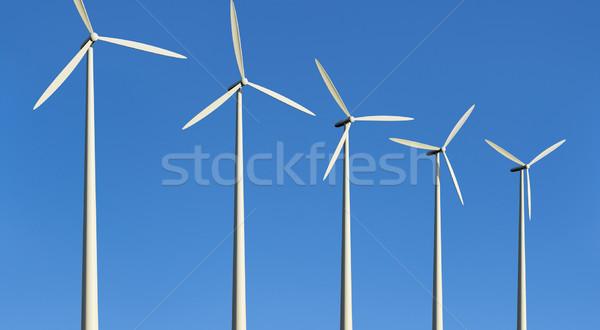 Blauwe hemel hemel Blauw milieu ontwikkeling Stockfoto © Onyshchenko