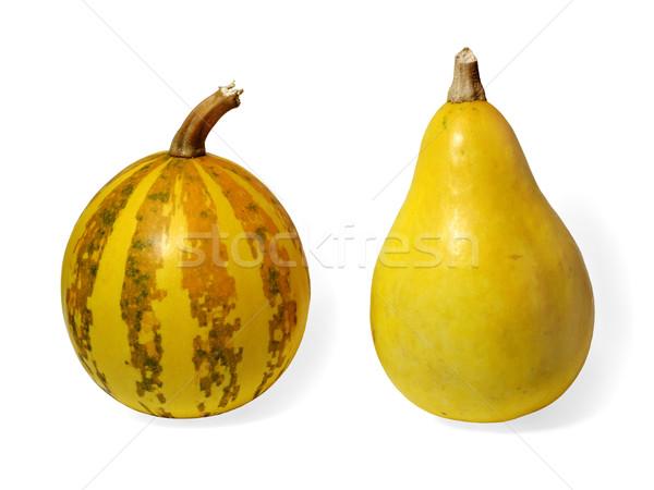 Twee klein pompoenen witte voedsel vruchten Stockfoto © Onyshchenko