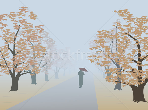 Autumnal alley Stock photo © Onyshchenko