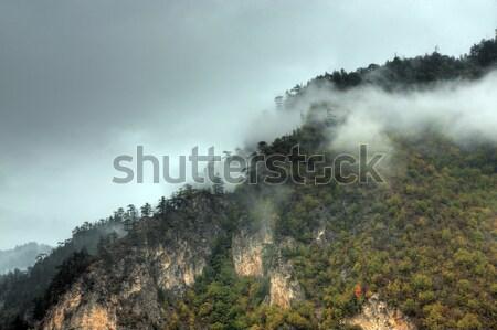 пейзаж мнение горные облака лес природы Сток-фото © oorka