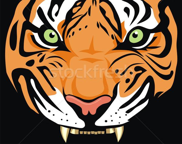 Tigris absztrakt állat illusztráció vad színes Stock fotó © oorka