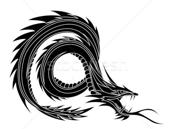 Dragon Stock photo © oorka