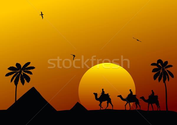Cameleers Stock photo © oorka