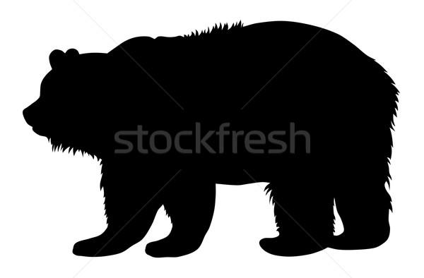 Ayı siluet hayvan vektör örnek Stok fotoğraf © oorka