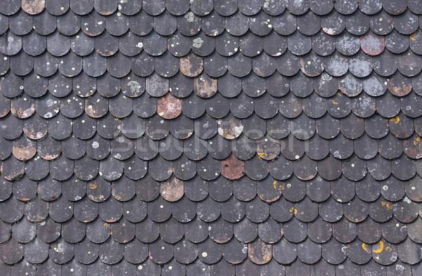Piastrelle · texture · 3d · architettura foto darchivio © dimitar