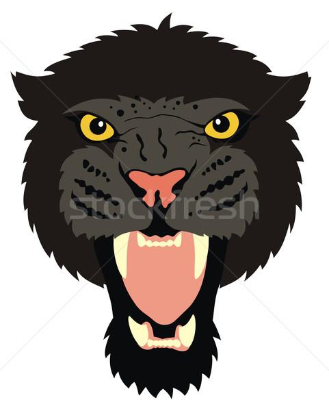 Pantera resumen gato negro leopardo vector Foto stock © oorka