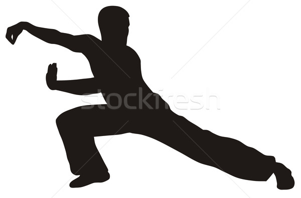 Harcművészet absztrakt harcos sziluett sport művészet Stock fotó © oorka