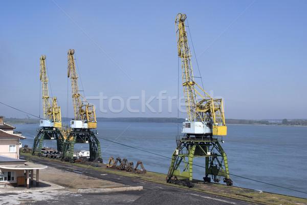 Cranes Stock photo © oorka