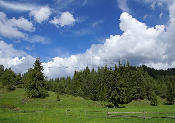Mountain Rodopi Stock photo © oorka