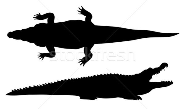 Absztrakt krokodil sziluett állat illusztráció Stock fotó © oorka