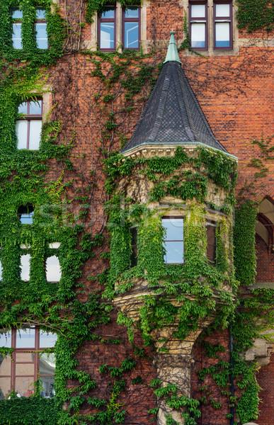 Homlokzat ablakok borostyán Hamburg Németország ház Stock fotó © oorka
