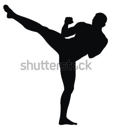 Karate absztrakt harcművészet sport doboz verekedés Stock fotó © oorka