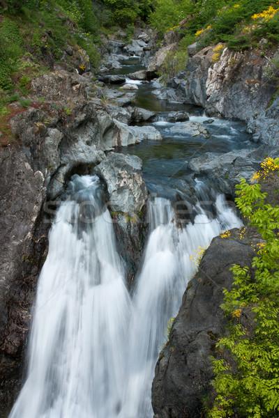 Vízesés víz zöld kövek friss zuhan Stock fotó © oorka