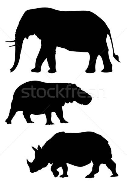 Animals Stock photo © oorka