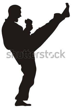 Martial art Stock photo © oorka