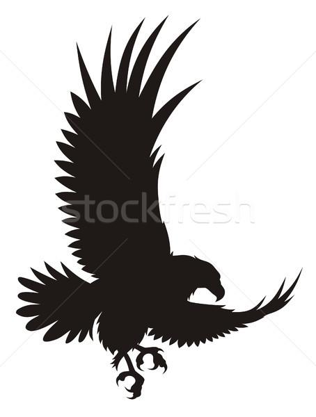 Adelaar abstract vogel silhouet vleugels grafische Stockfoto © oorka