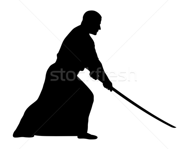 Aikido spor sanat siluet asker Japon Stok fotoğraf © oorka