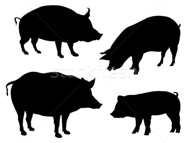 свиней аннотация различный фермы свинья Сток-фото © oorka