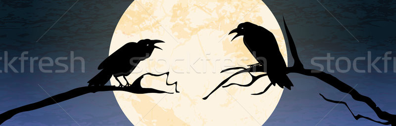 Halloween scary crow background Stock photo © opicobello