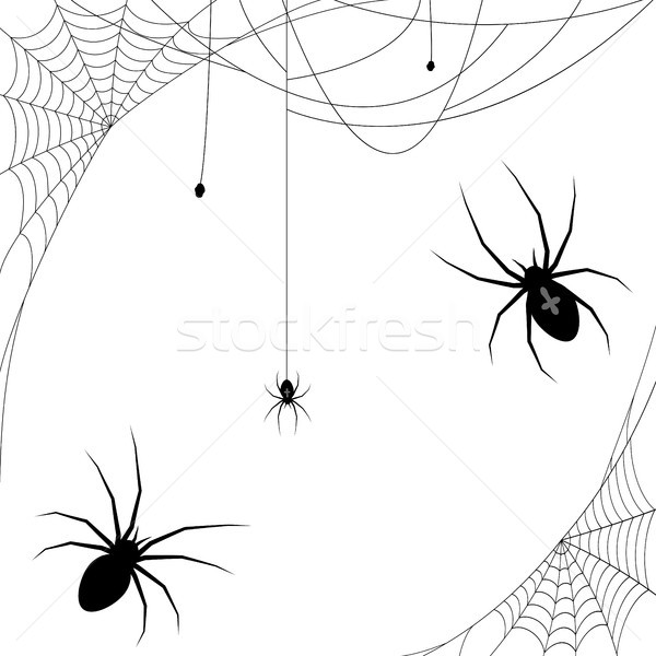 Halloween spider and spider webs Stock photo © opicobello