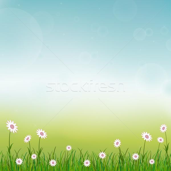 весны небе трава счастливым солнце лет Сток-фото © opicobello
