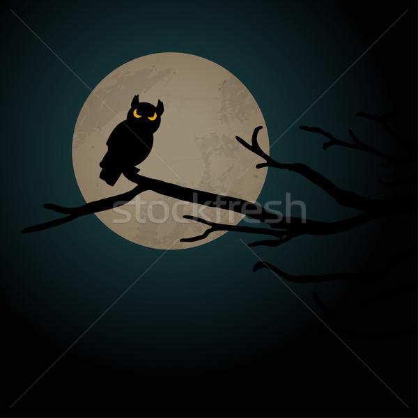 Хэллоуин Scary совы полнолуние иллюстрированный Элементы Сток-фото © opicobello