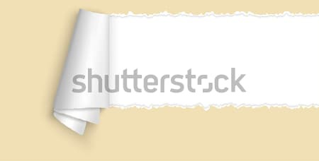 ripped open paper with space for text Stock photo © opicobello