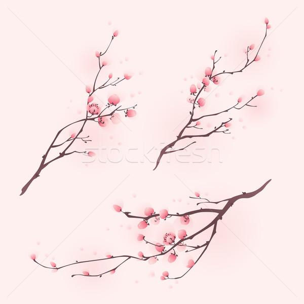Távolkeleti stílus festmény cseresznyevirág tavasz három Stock fotó © ori-artiste