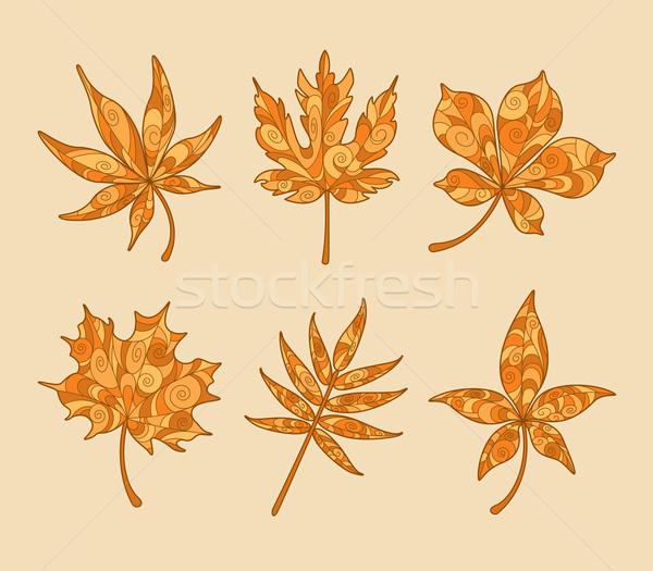 ősz juhar levelek izolált gyűjtemény Stock fotó © ori-artiste